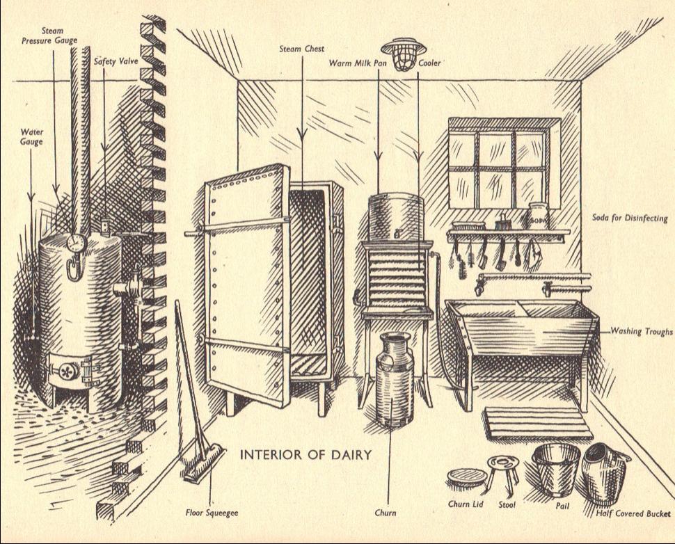 ED War manual milking parlour